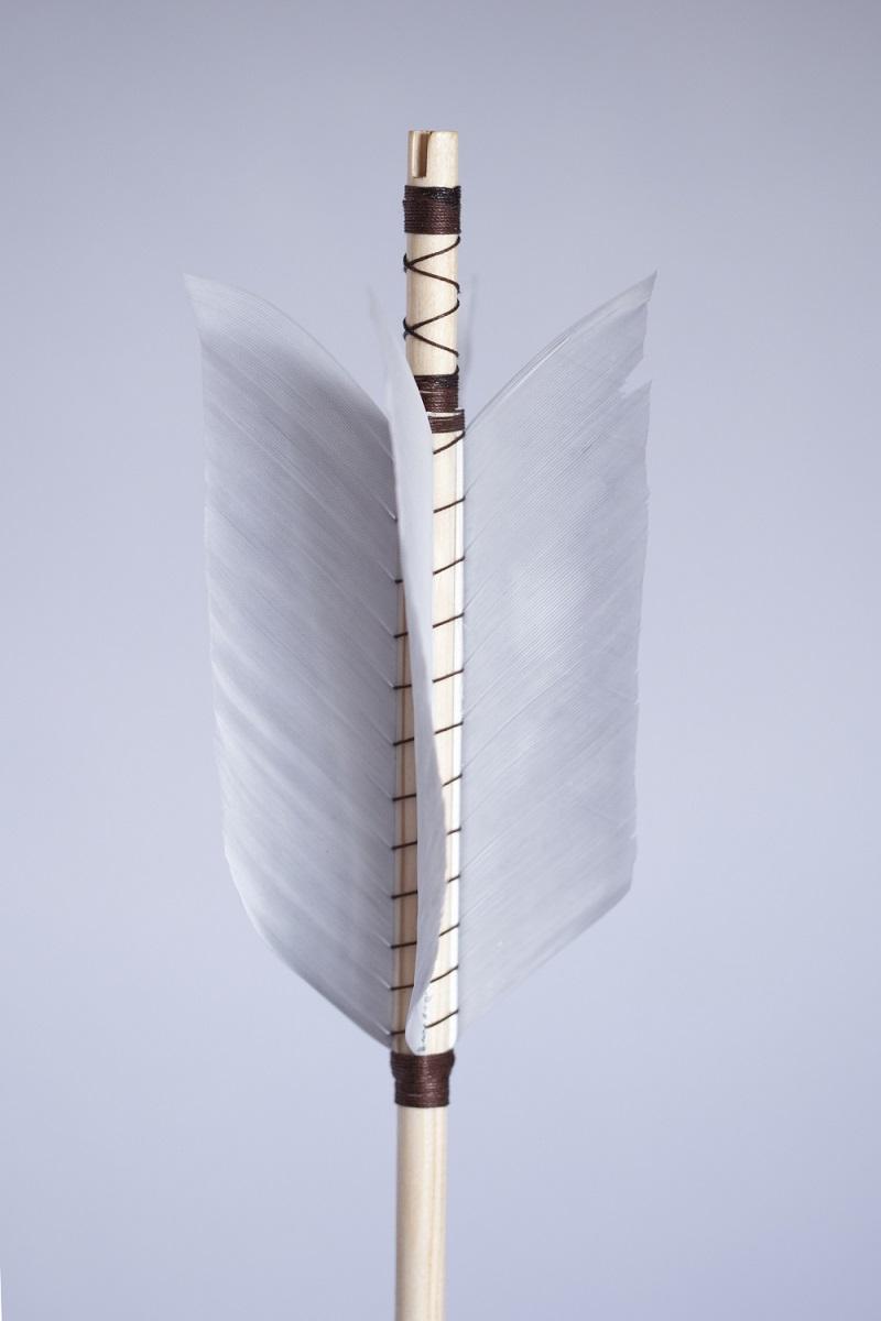 Combat blunt arrow